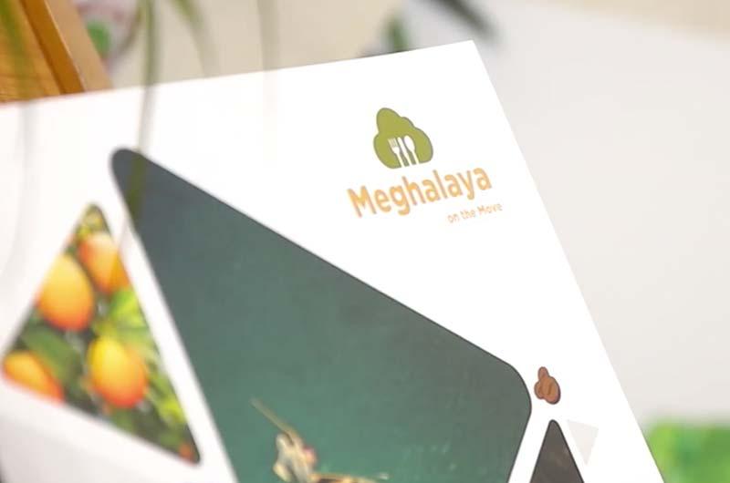Pixelhen Best digital marketing company in banglaore