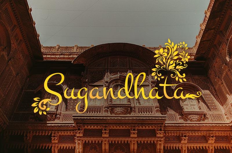 Packaing design banglaore